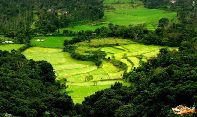 "Best Tourist Place in India:Coorg ""The Scotland of India"""