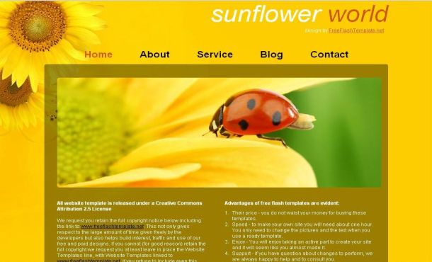 Brown Yellow SunFlowers CSS Website Template
