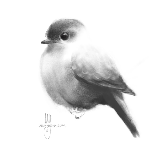 Bird charcoal dawing by Artmagenta