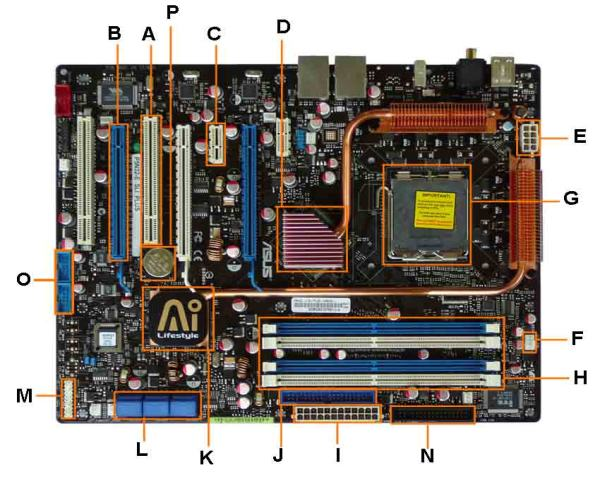 What is a Motherboard? Definition & Diagram, मदरबोर्ड डायग्राम