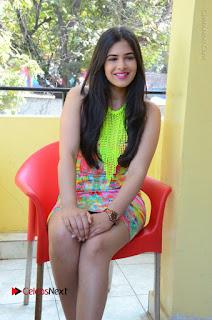 Telugu Actress Prasanna Stills in Short Dress at Inkenti Nuvve Cheppu Press Meet Stills  0140.JPG