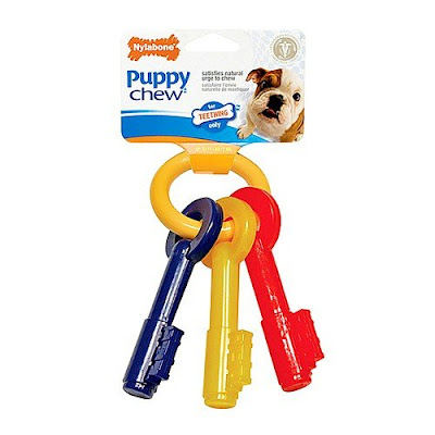 Best Teething Toy for Puppies