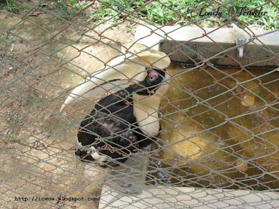 Dulahazra safari park - Cox'sBazar