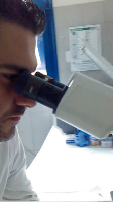 http://microrganismiacquaenzo.blogspot.it/