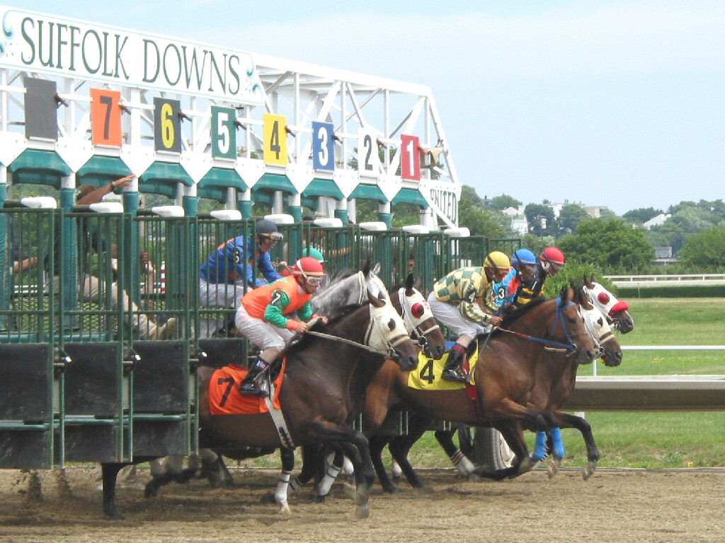 Free Horse Racing Systems, Horse Racing Handicapper