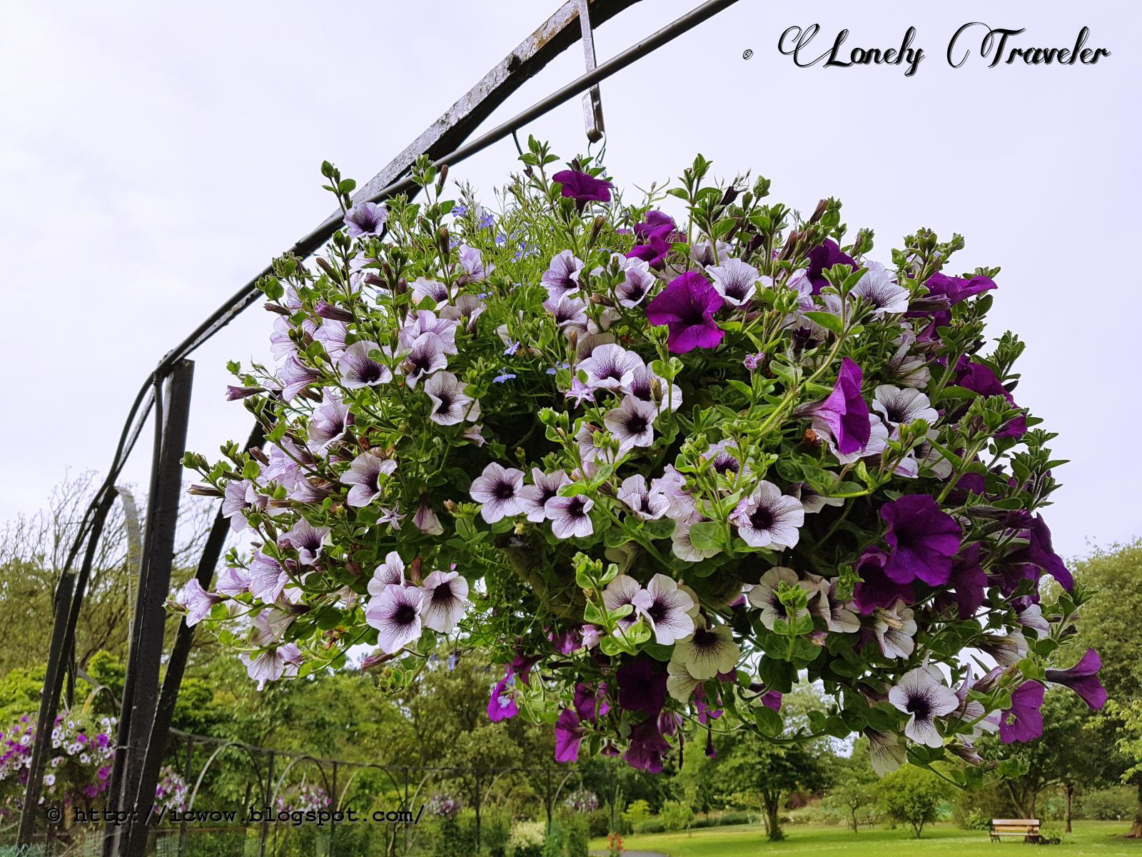 National Botanic Gardens Ireland