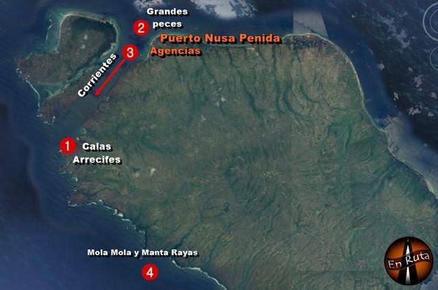 Inmersiones-Nusa-Penida