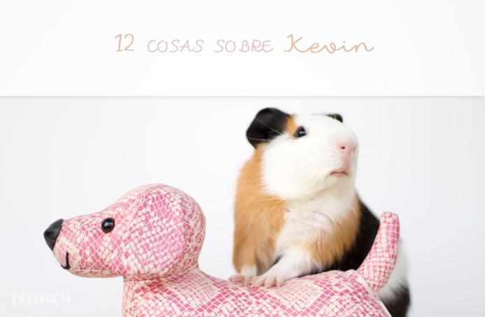 12 cosas Kevin cobaya fotografía