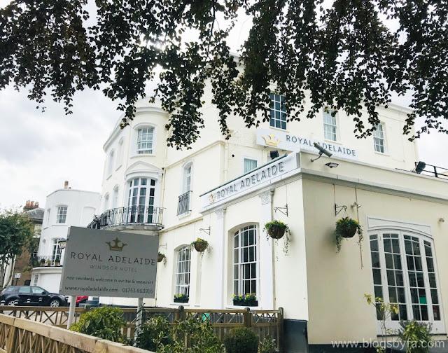 Royal Adelaide Hotel  Windsor