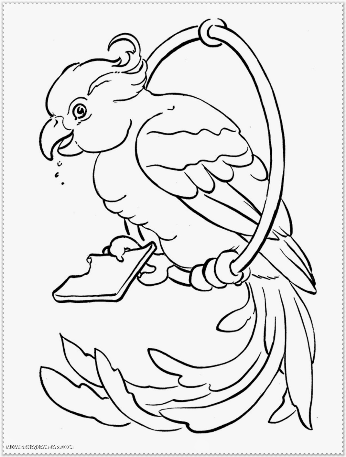 Cartoon Bird Coloring Pages