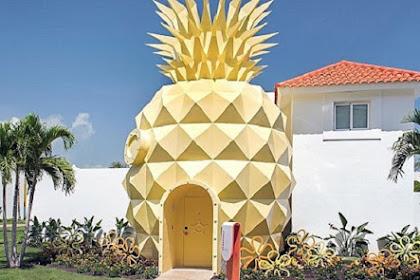 Melihat Uniknya Rumah Nanas SpongeBob di Dunia Nyata