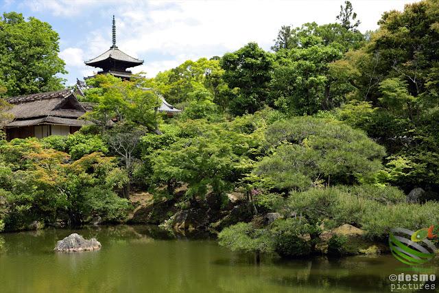 京都~仁和寺