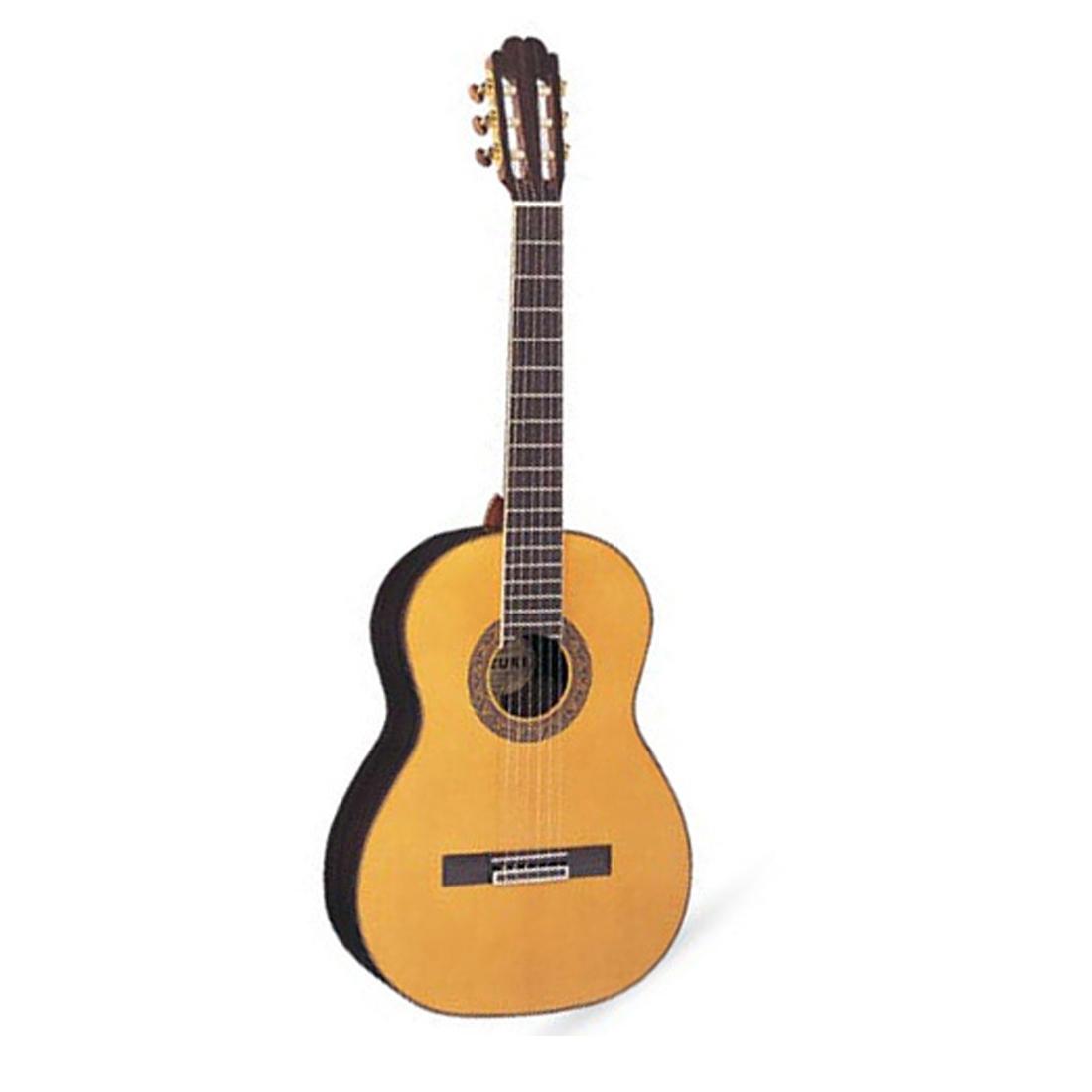 dan guitar suzuki sdg-6nl