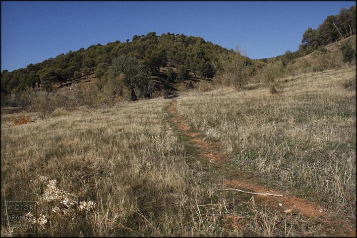 granada,sendero,paisaje,naturaleza