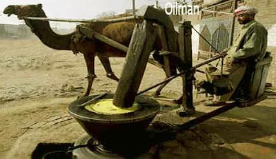 oilman occupation