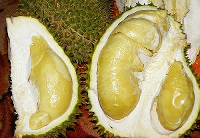 agar durian tidak bau, bau durian, buah durian, durian, Kuliner, makanan, tips memasak,