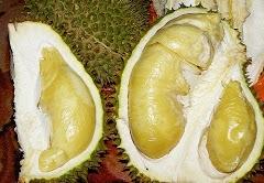 Cara menghilangkan bau durian pada tangan
