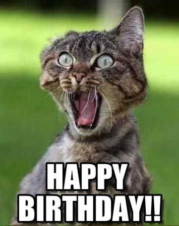 funny-happy-birthday-images-free-download