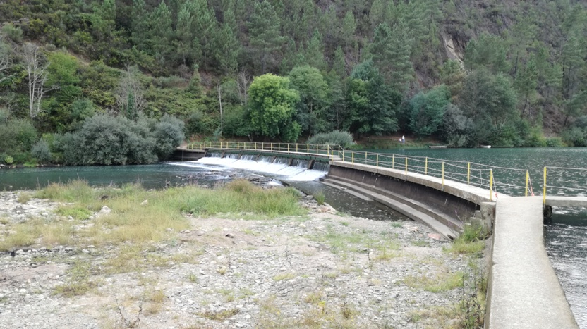 Zona Fluvial da Lavandeira