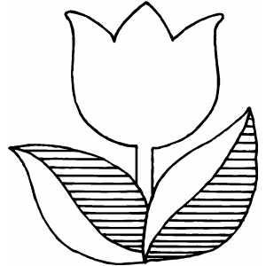 Dessins et coloriages coloriage moyen format imprimer - Coloriage tulipe ...