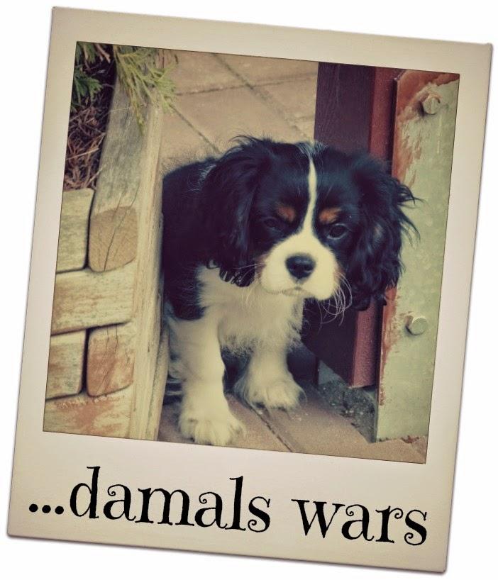 DAMALS WARS 08 2019 GEWINNSPIEL HEUTE