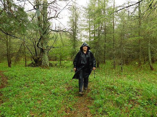 Kilka kroków marszu od Przełęczy Łupkowskiej w kierunku Siwakowskiej Doliny.