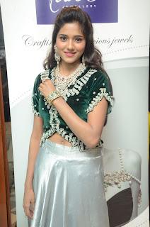 Shalu Chourasiya At Jewellery Expo Launch %282%29.JPG