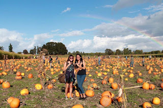 Amber and Melanie in a pumpkin patch