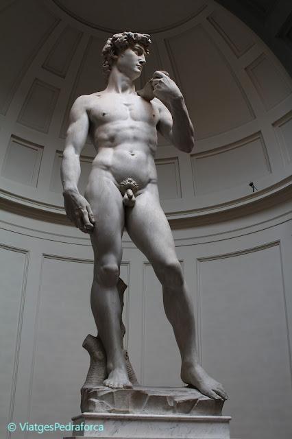 Els millors museus de Florència, Toscana, Itàlia