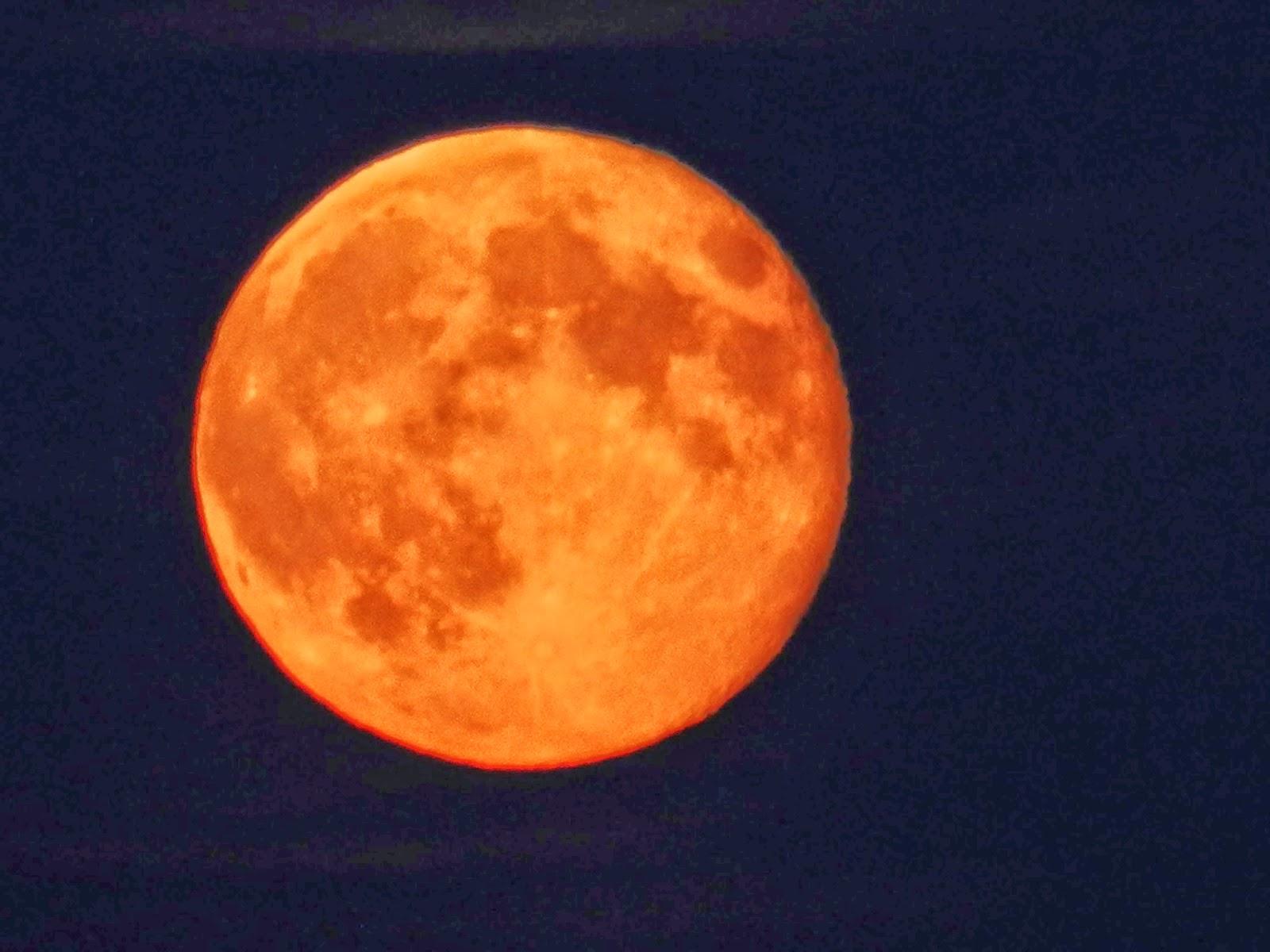 "Bible Prophecies Fulfilled: ""Tetrad"" of Four Lunar ..."