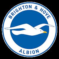 2018-2019 Brighton & Hove Albion FC DLS Logo
