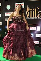Pragya Jaiswal Sizzles in a Shantanu Nikhil Designed Gown  Exclusive 091.JPG