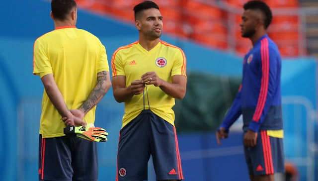 Colombia-Japan: The probable composition