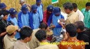 Formasi Penyuluh Pertanian CPNS 2014 Pemerintah Memberikan Kuota 5000