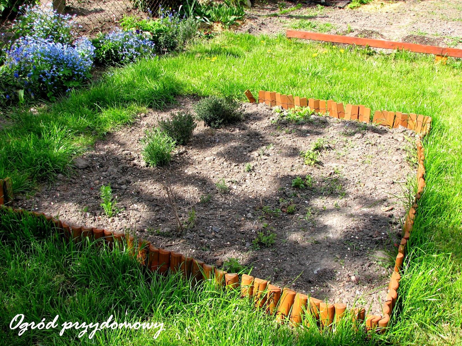 rabata ziołowa, ogród przydomowy