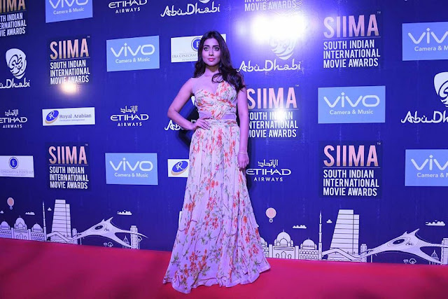 Siima 2017 Press Conference At Abu Dhabi Photos