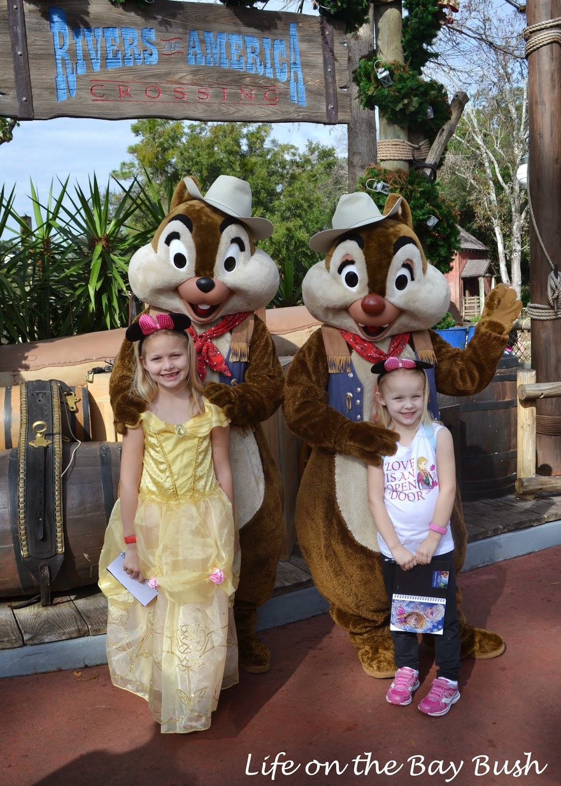 Meeting Chip N Dale at the Magic Kingdom