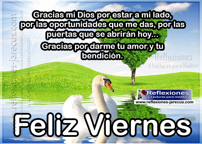 Feliz viernes, gracias mi Dios por estar a mi lado, por las oportunidades que me das, por las puertas que se abrirán, gracias por darme tu amor y tu bendición.
