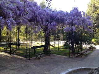 Εθνικός Κήπος Γλυσίνες