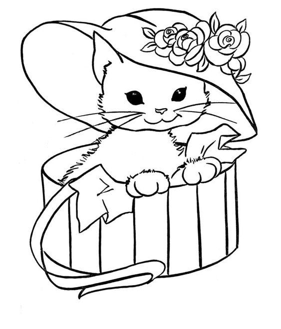 Tranh tô màu con mèo trong hộp quà