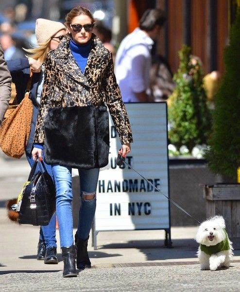 Olivia Palermo & Johannes Huebl Walking Their Dog In NYC& Johannes Huebl Walking Their Dog In NYC