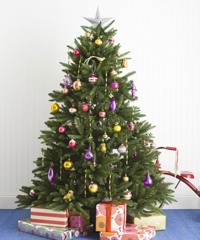 A LITTLE SUSSY: Real Simple Christmas Trees