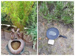 Improvisierte Wasserstelle für Vögel und Insekten