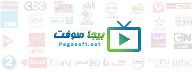 http://www.pegasoft.net/