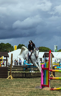 equine show jumping