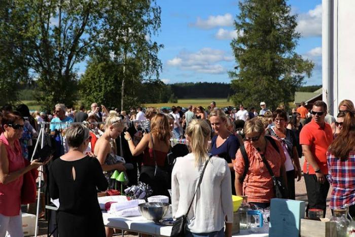 åblogien kirpparivilinää 2015 - kuvaaja Kalle Mäkelä