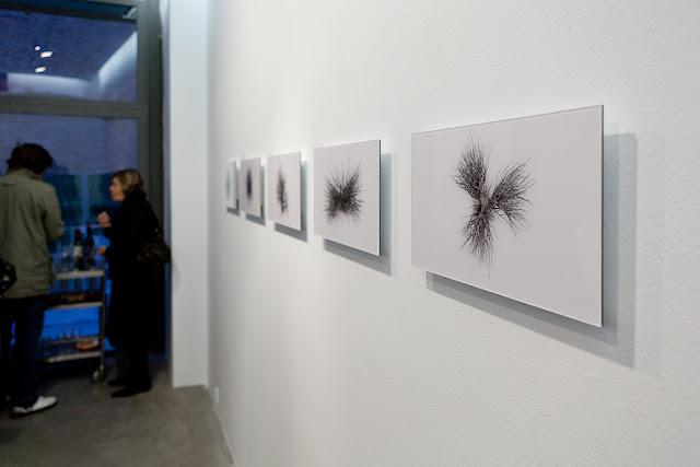 Exposición del artista Sergio Sotomayor en la galería Blanca Soto Arte, Madrid 2010.  Sergio Sotomayor artist exhibition at Blanca Soto Art Gallery Madrid.
