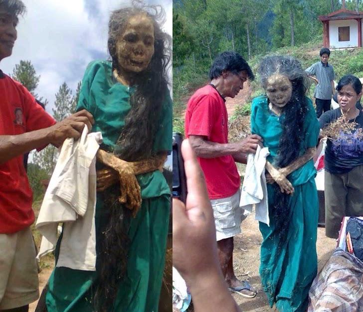 Ritual Manene Sejarah Dari Tana Toraja Sulawesi Selatan Indonesia