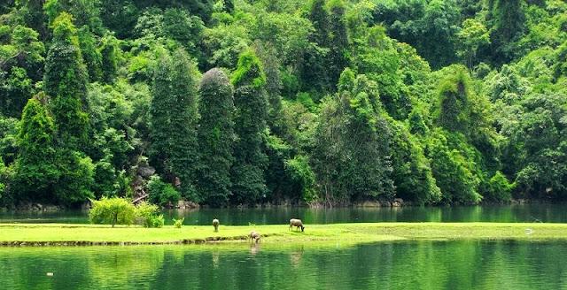 Family Tours in Ba Be Lake – Vietnam 1