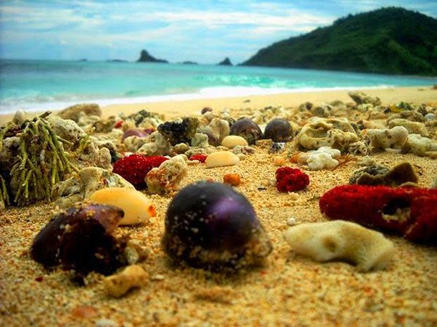 Photo Teluk Mekaki di Sekotong Lombok